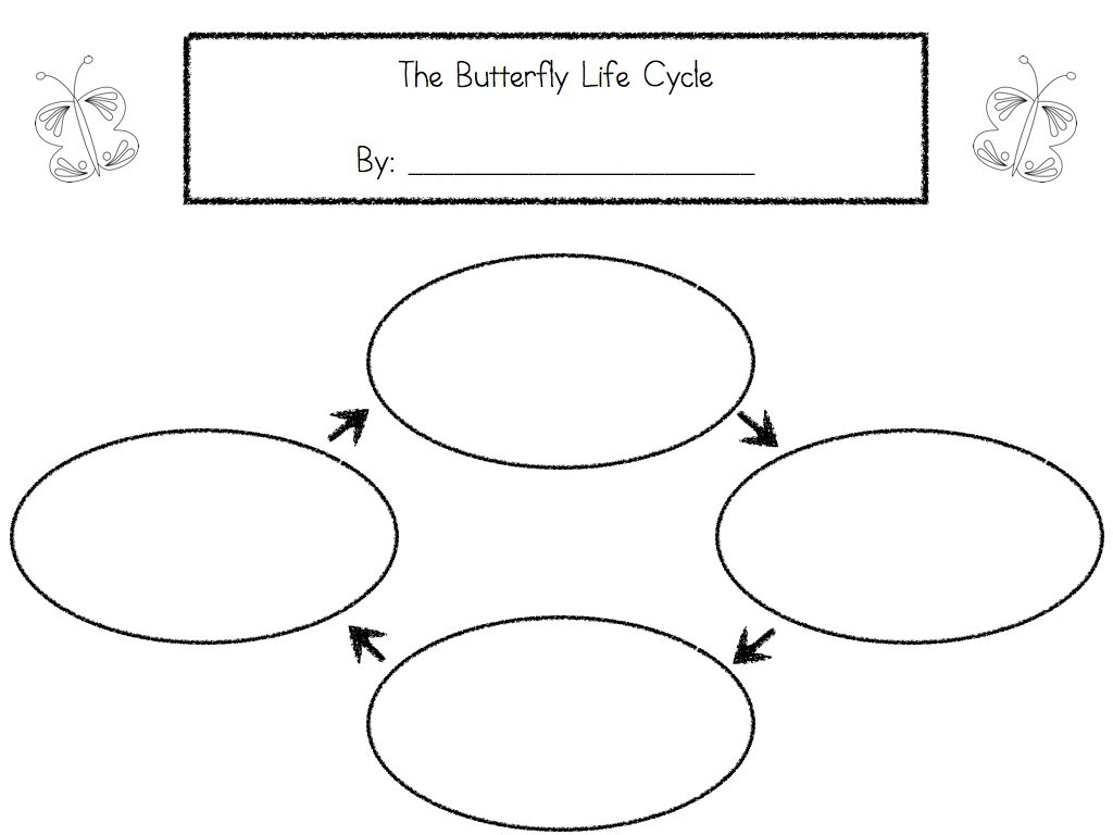 worksheet Life Cycle Of A Plant Worksheet life cycle activities learning at the primary pond activities