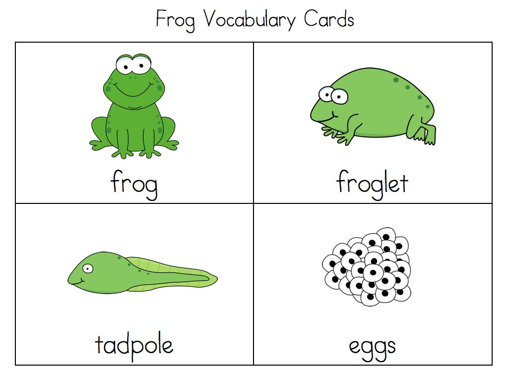 Frog Life Cycle For Kids Worksheet Life Cycle Acti...