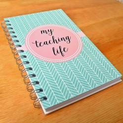 Teacher Reflection Journals