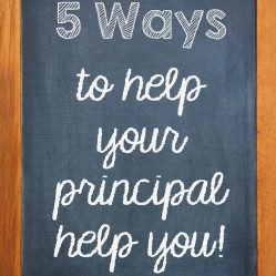 Getting Along With Your Principal:  5 Ways To Help Your Administrators Help You