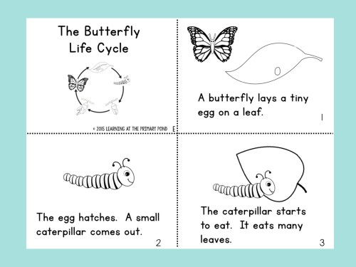 picture about Butterfly Life Cycle Printable Book identify How towards Coach Deciphering Designs towards Having difficulties Website visitors