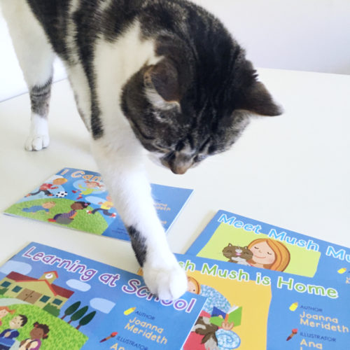 Max and the Mush Mush readers for Kindergarten students
