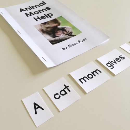 Sentence cut apart activity for guided reading