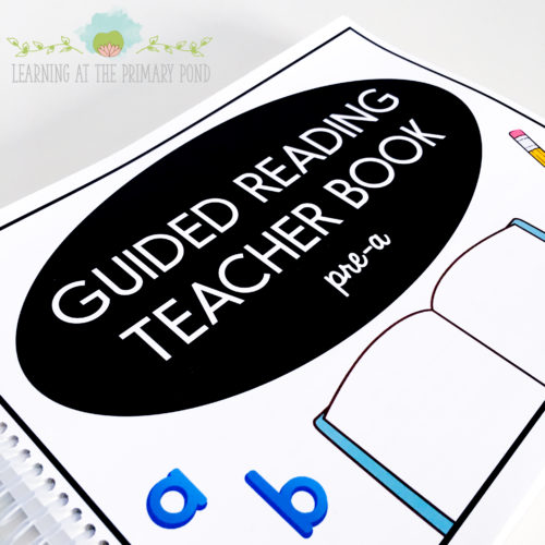 This is my Pre A guided reading teacher book with tons of lessons and activity ideas!